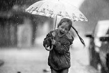 rain / H アンブレラ イメージ案
