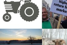 Indie Farmer / The latest news and articles from the Indie Farmer website