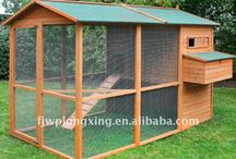 Chicken Cages :D