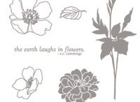 Fabulous Florets stamp set / by Tammy Jo Tanner