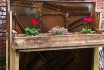 Piano / by Angie Peace