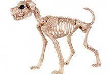 Halloween Favorites / Our favorite spooky delights!