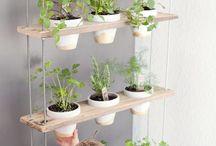 Garden/Planter