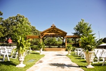 Wedding & Event Venue / Centaur Arabian Farms - A simple country elegant venue located in the heart of East Texas