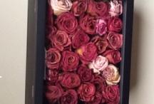 Çiçek düzenleme