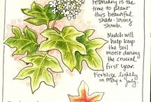 gardening journal / by Katherine Wright