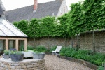 pleached trees, underplanting, hedges