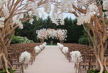 Wedding Venue Inspirations
