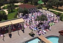 Yoga Festivali