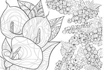 Coloring Pages for Grown Ups / Coloring pages for grown ups and coloring books group board.
