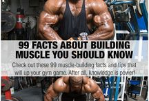 Muscle and Strength.com