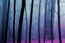 Purplelish