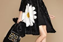 Crazy for fashion-⭐️