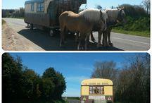 Itinérance / A cheval, en voiture, à pied, en coucou...il y a 1001 façons de traverser le Cotentin Val de Saire : à chacun la sienne ;-)