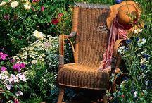 kertészeti örömök