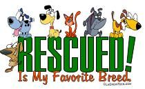 our RODENT shirts / by RESCUED! Is My Favorite Breed.