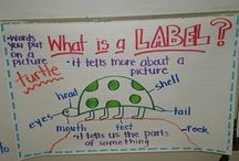 literacy teaching ideas