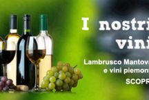 Vini della Bottega del Buongusto / Sul sito della Bottega del Buongusto di Novellara trovate grandi vini tipici a prezzi imbattibili. Qualità e convenienza a portata di clic!