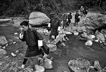 Archery: Bhutan's Pride / Mary F. Calvert
