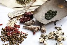 Herbal Education! / by Golden Poppy Herbal Apothecary