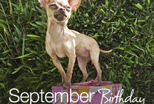 September Birthday Party Ideas