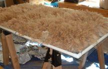 Alpaca and fiber cleaning