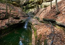Starved Rock News / See when Starved Rock Lodge & Conference Center or Starved Rock State Park are featured in the news!  / by Starved Rock State Park & Lodge