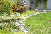 Garden Design / by Constance Polanik-Le Blanc
