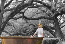 Favorite Places & Spaces / by Shelly Bertram