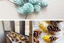 PINECONES! PINECONES! / So many PINECONES in your yard! Or neighbors! These are great PINECONE ideas