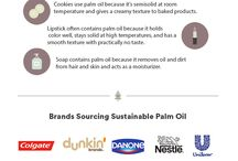 The Truth About Palm Oil / When shopping at the grocery store, it's easy to overlook the ingredients label, especially if you have a toddler tugging on your arm. Yet you might want to consider taking a closer look: Palm oil is used as an ingredient in half the products found on supermarket shelves, and its production is responsible for large-scale deforestation and loss of habitat for endangered wildlife. Here's what you need to know: http://www.takepart.com/article/2016/04/18/pervasiveness-palm-oil?cmpid=tp-pinterest
