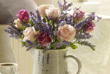 F L O W E R S / Beautiful flowers