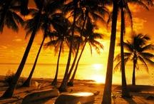 paraiso con sol