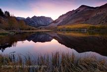 Sunrise / sunset / by Cindy Carroll