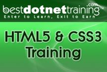 HTML5 CSS3 Online Training / HTML5 CSS3 Online training at BestDotNetTraining with a strong focus and dedication in helping beginners to develop websites in simple and easy way.