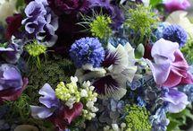 Bloem ronde biedermeier vorm / Violet, blauw, roze en groene kleuren