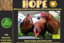 Poule bio hope pet food