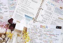 study inspiratio