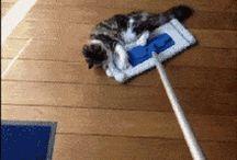 limpador caseiro