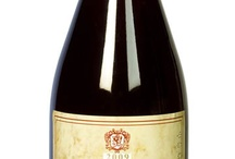 Red Wine / Best quality red wines produced in the Lucca and Montecarlo area (Tuscany). It is possible to buy bottles at Enoteca Calasto and on our web site www.lucca-wine-treasures.com