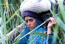 The world of Cinema: Turkey, the M.E and Iran