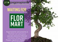 Flormart 2017 / Paganopiante al Flormart, a Padova, il salone internazionale del verde. Un evento in cui si incontrano le più importanti realtà del settore florovivaistico internazionale per conoscere le innovazione nel settore del verde.