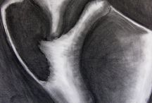 Charcoal / Drawing inspirations with charcoal media.