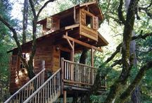 Backyard- treehouse / Ideas for my backyard