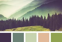 colors compilation