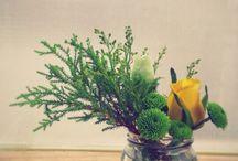 TEACHAICHA / Tea & flower