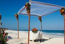 bluecharmweddings.com