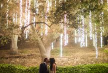 Outdoor Wedding Ideas / by The Davey Tree Expert Company