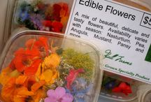 Edible Flowers & Plants / Dining in the garden. Eat what you grow.