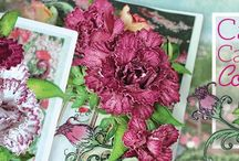 Camelia Carnation Collection